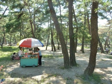 Wonsan (Foto und Rechte: Nordkorea-Reise.de)